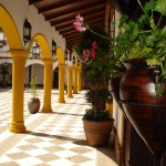 EL PATIO DOÑA MANUELA. (Patio) (9)